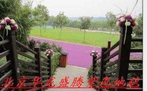 北京华龙盛腾供应长春婚礼紫色地毯婚礼地毯价格低廉