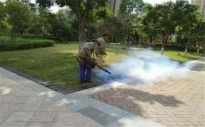 佛山南海区白蚁虫害防治,防治技术员工技术力量雄厚