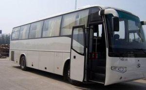 银川旅游租车服务,一站式引领旅行新体验