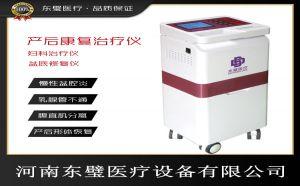 产后康复治疗仪(中医康复理疗仪)