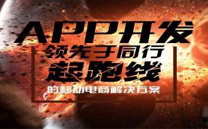 广东带源码的贷还app系统开发流程